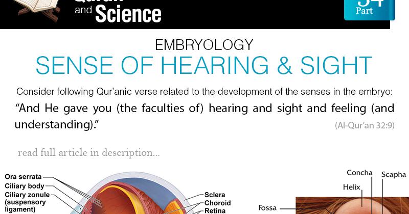 sight and hearing