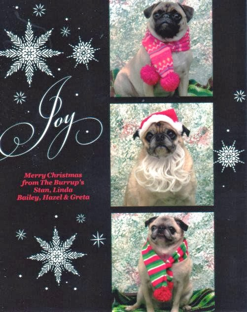 xmas card from Idaho pug