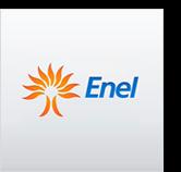 Enel, an Italian electricity company