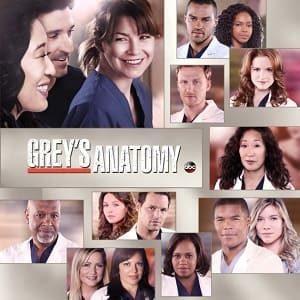 Greys Anatomy - A Anatomia de Grey 10ª Temporada Completa Séries Torrent Download capa