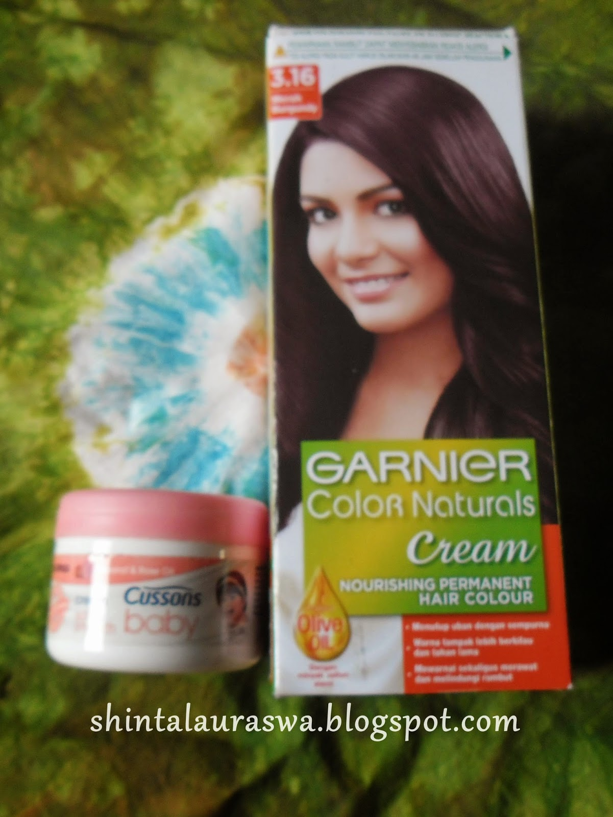 Shinta Laura Dewani39s Room Review Garnier Color Naturals Creme