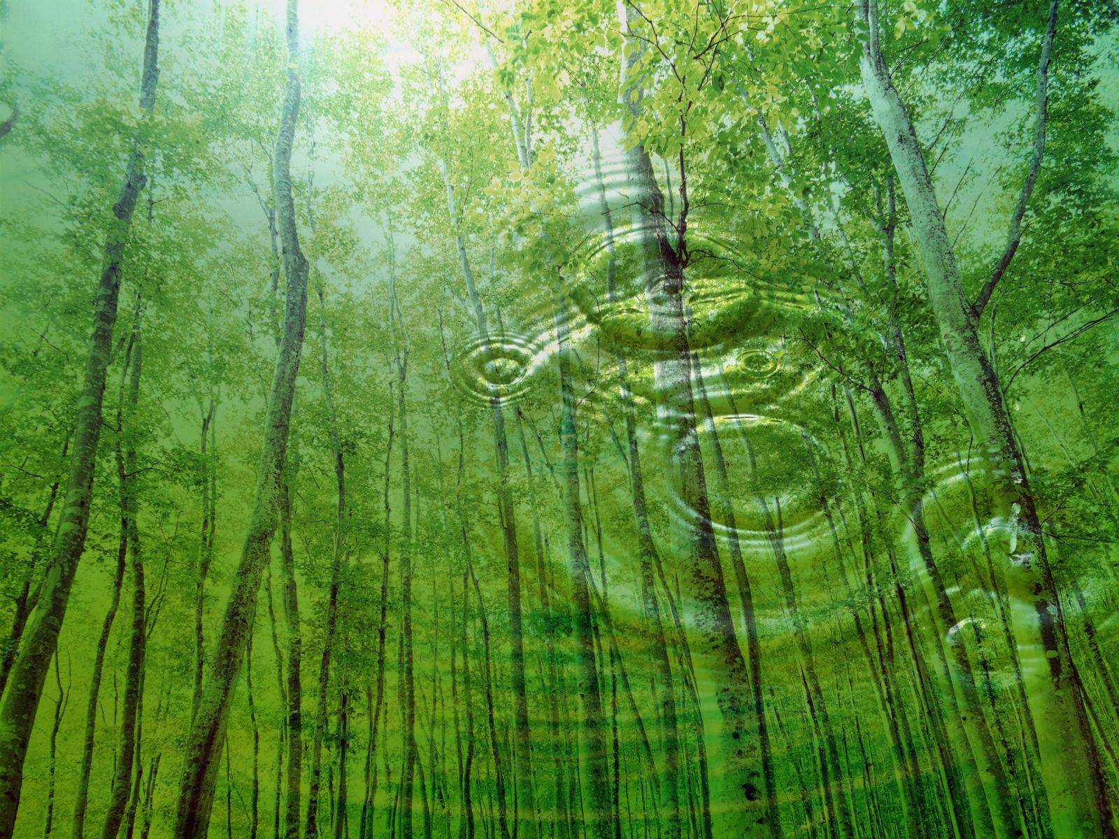 nature of religion Scientific pantheism is a modern form of pantheism that deeply reveres the universe and nature and joyfully accepts and embraces life, the body and earth, but does not believe in any supernatural deities, entities or powers.