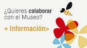 Amigos y Patrocinadores del Museo
