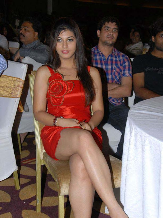 saara josh at disco audio launch hot photoshoot