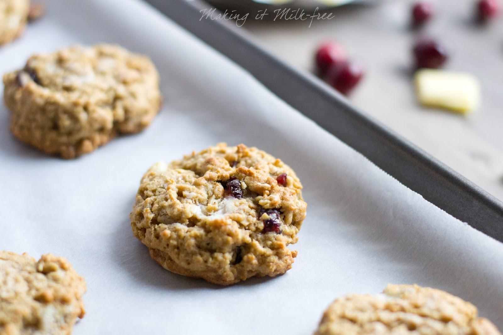 Cranberry Bliss Oatmeal Cookies {dairy + gluten free} from Making it Milk-free