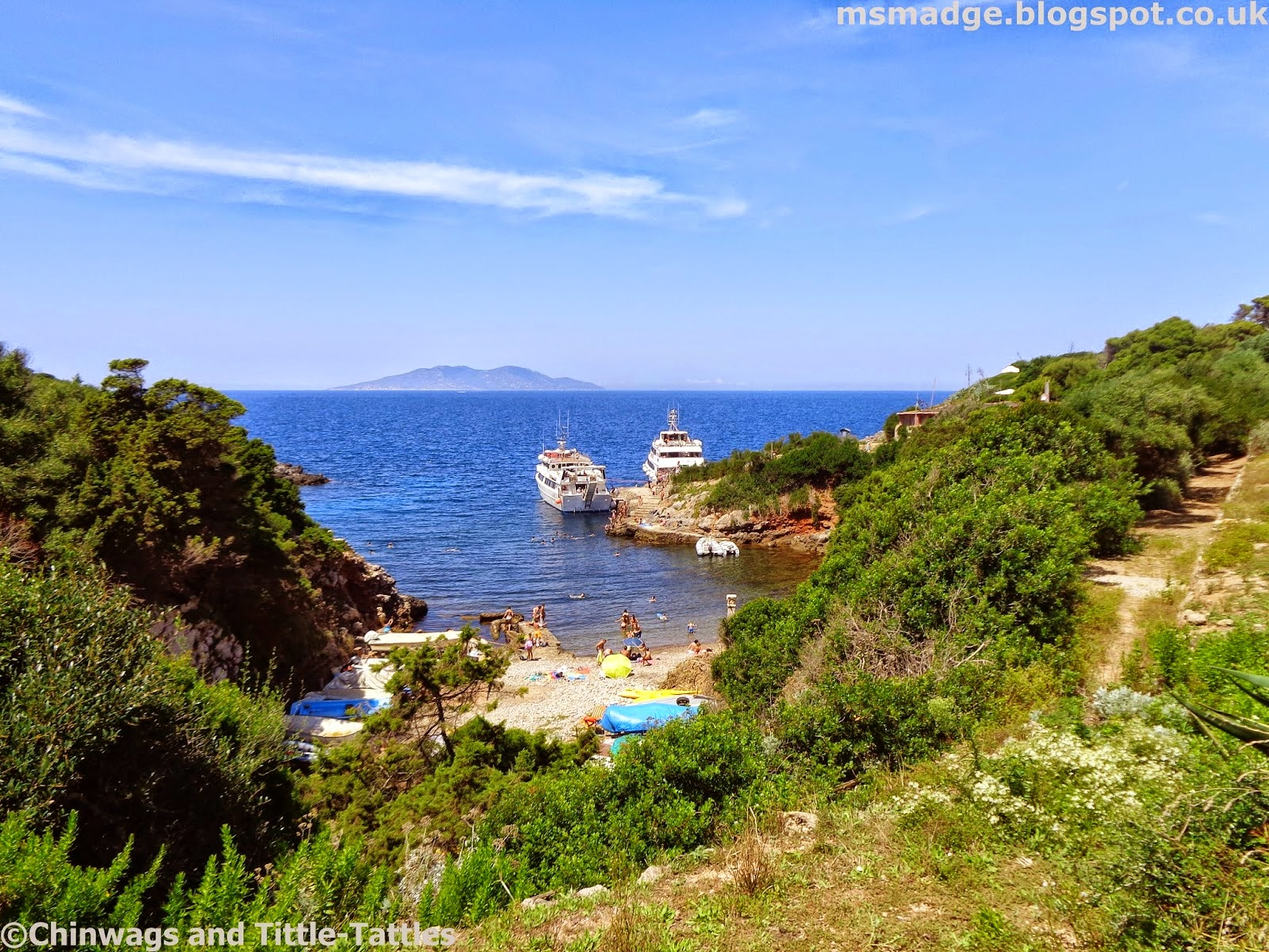 http://msmadge.blogspot.co.uk/2014/08/nature-tripping-at-giannutri-island.html