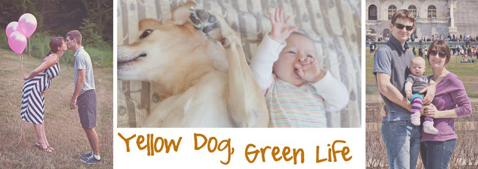 yellow dog, green life