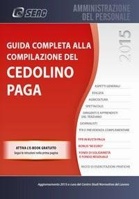Guida completa alla compilazione del cedolino paga 2015