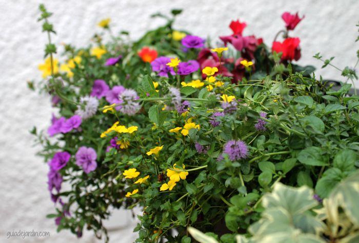 Jardinera para la terraza o el balcón
