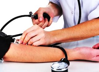 tekanan darah manfaat semut jepang