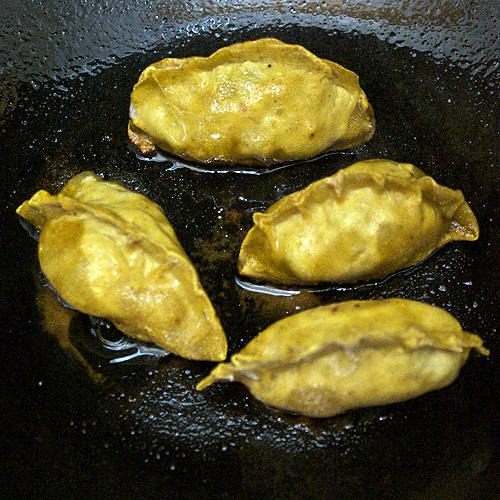 Javaholic: Potstickers with Curried Skins