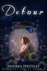 Cover for Detour