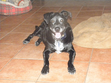 Cleo, Jan 1998-Sep 2011