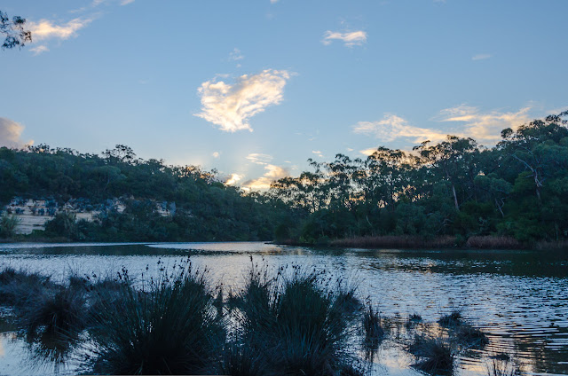 glenelg river at pattersons camp