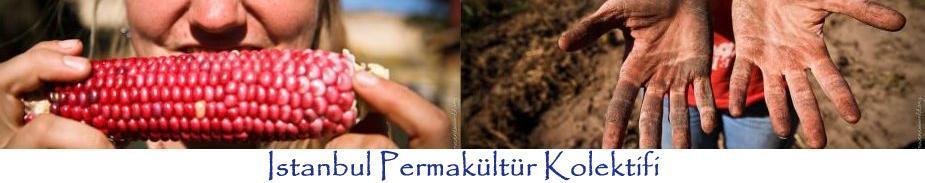 İstanbul Permakültür Kolektifi