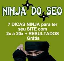 Curso Ninja do SEO