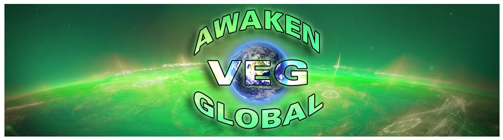 AGN VEG GLOBAL