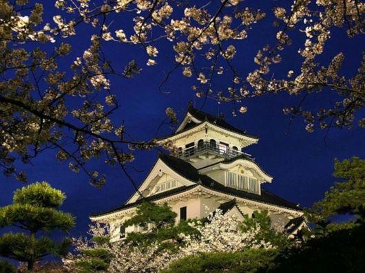 جمال الطبيعة الساحر في اليابان