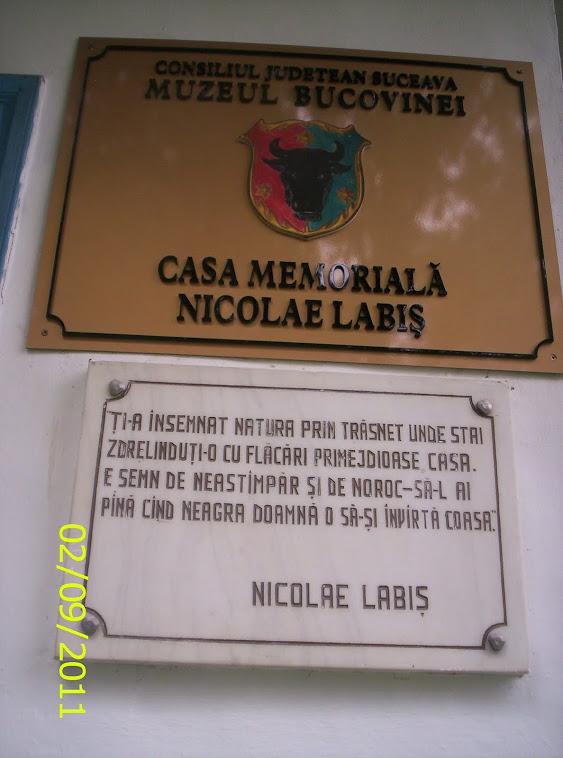 CASA MEMORIALA A POETULUI NICOLAE LABIS