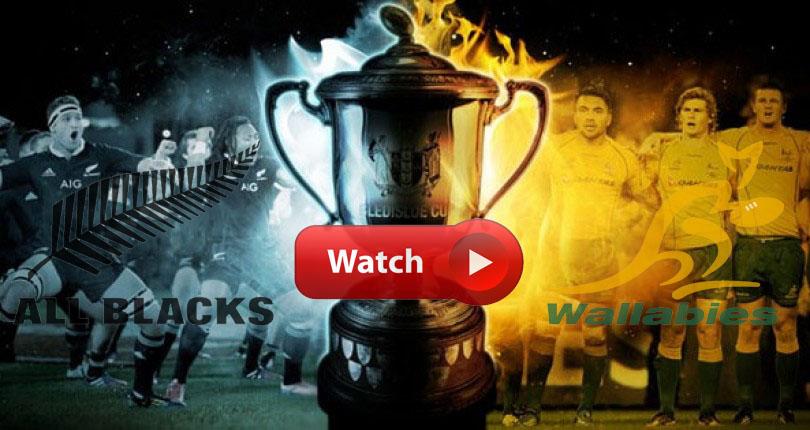 Bledisloe Cup Live Stream