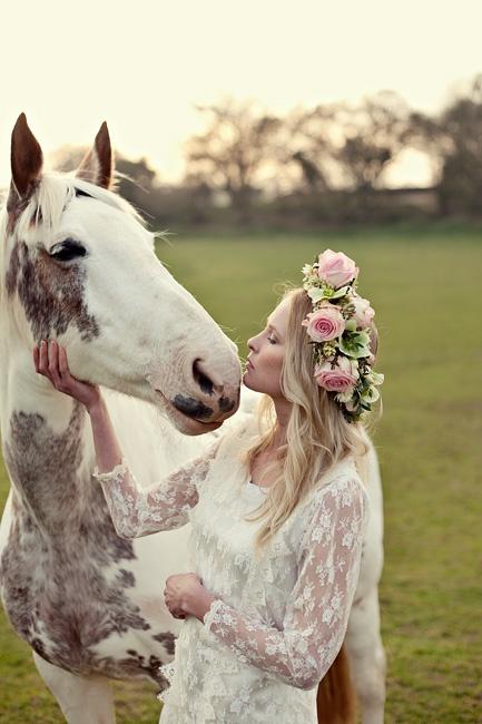 Cheval a un mariage