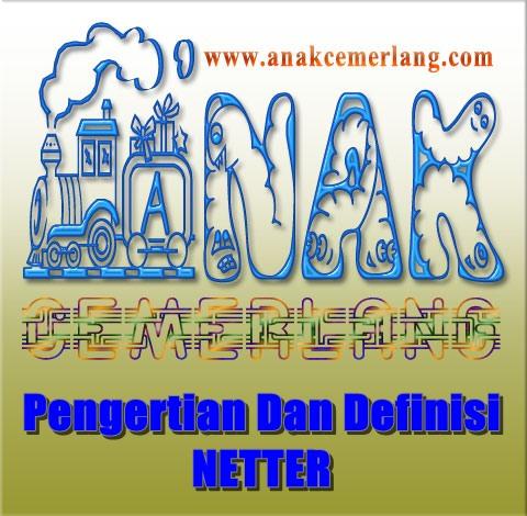 Pengertian Dan Definisi Netter