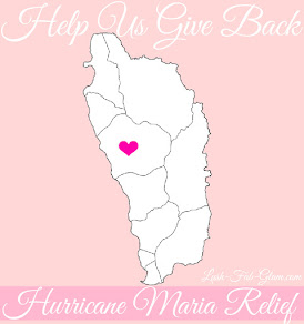Hurricane Maria Relief & Recovery.