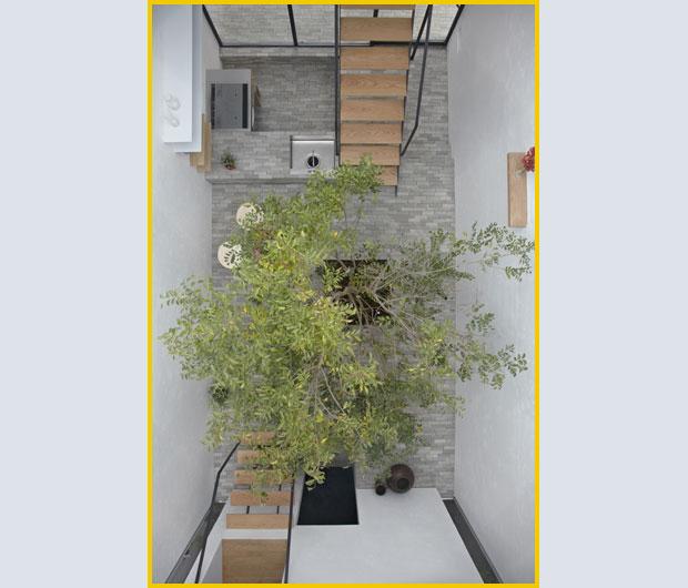 I am claire eiffel arboles en casa - Focos para patios ...