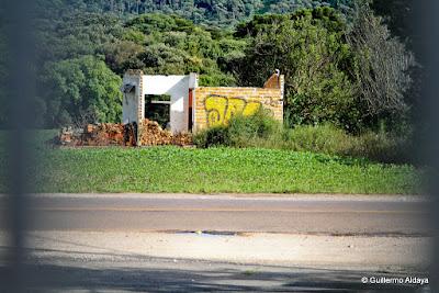 Em Campo Magro (Paraná, Brasil), by Guillermo Aldaya / AldayaPhoto