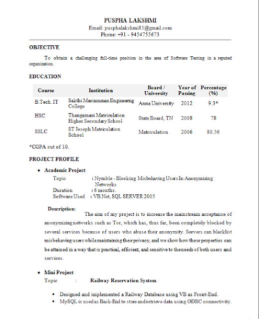fresher resume format it professional