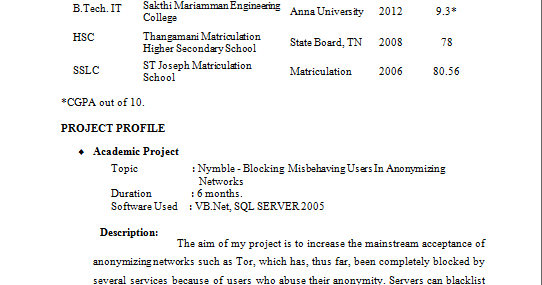 Fresher Resume Format It Professional