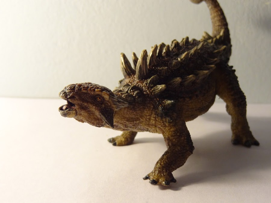 PAPO Styracosaurus and Euplocephalus 002+%25282%2529