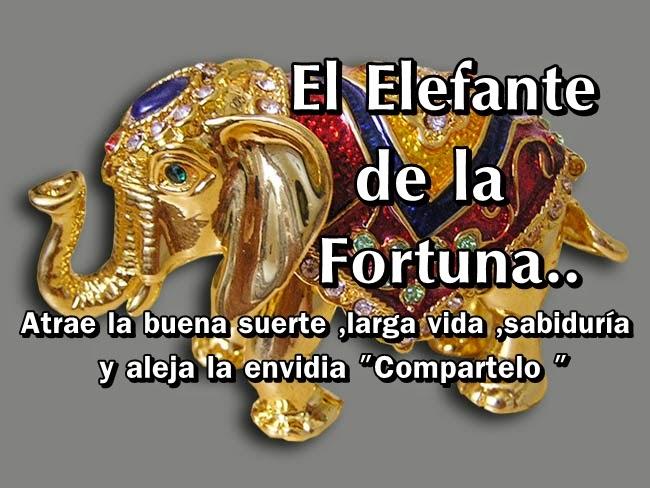 Tan solo amor el elefante de la fortuna - Como tener suerte en la vida ...