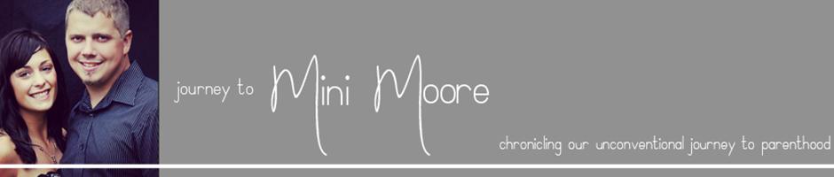Journey to Mini Moore