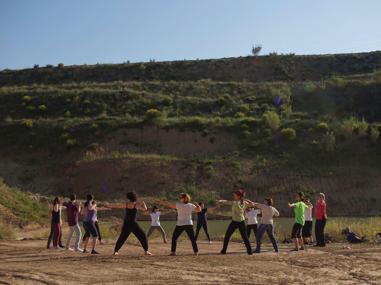 Practicant Txi Kung en grup