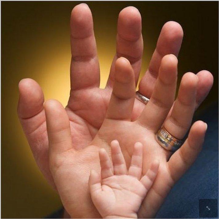 сочинение все могут руки человека