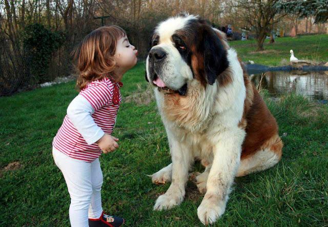 Sweet Baby Kissing Her Best Friend