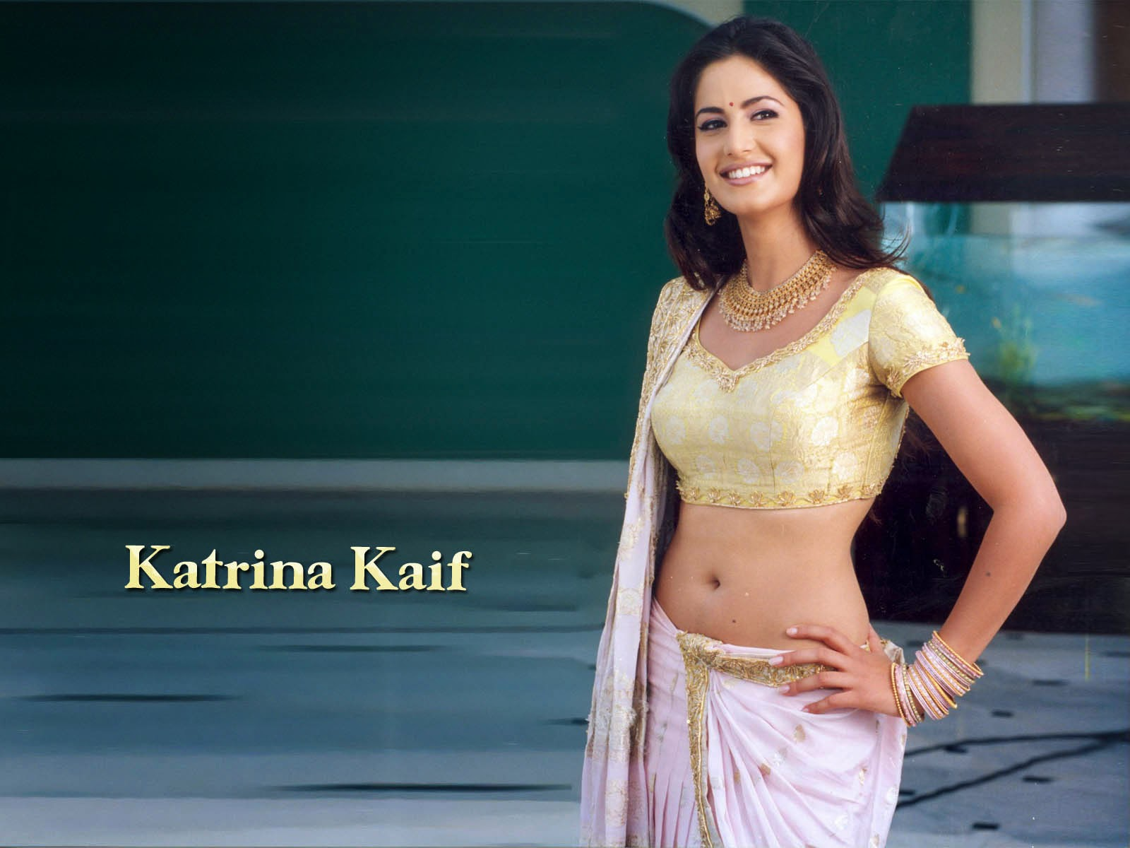 gorgeous katrina kaif sexy hd wallpapers