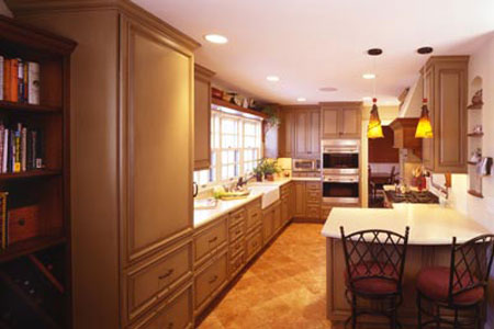 The House Transitional Kitchen Design Ideas