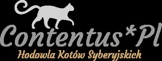 Hodowla kotów syberyjskich CONTENTUS*PL