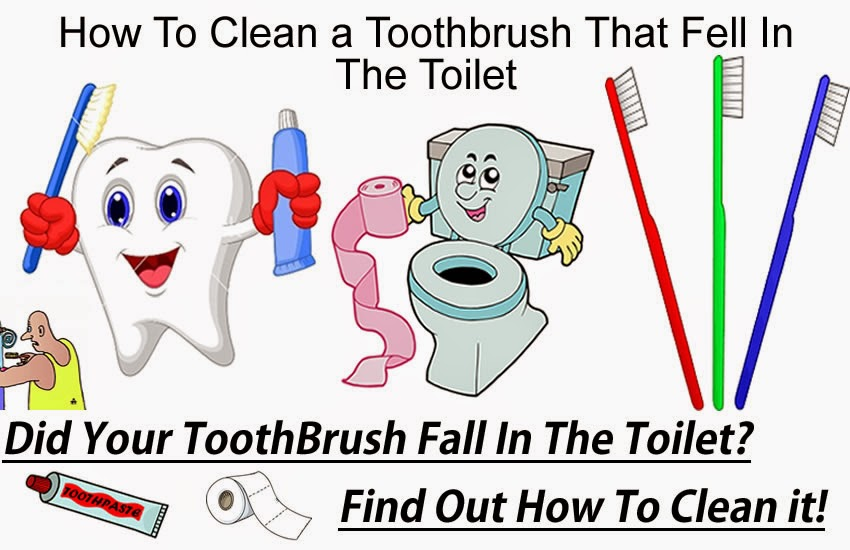 how to clean a toothbrush that fell in the toilet how to fix repair things yourself. Black Bedroom Furniture Sets. Home Design Ideas