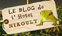 Hôtel, conseils de voyage, ... découvrez le blog du Niaouly