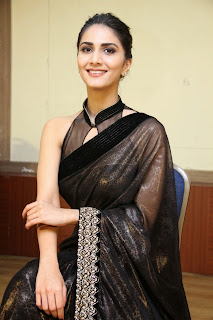 vaani kapoor new  stills in black saree(14)
