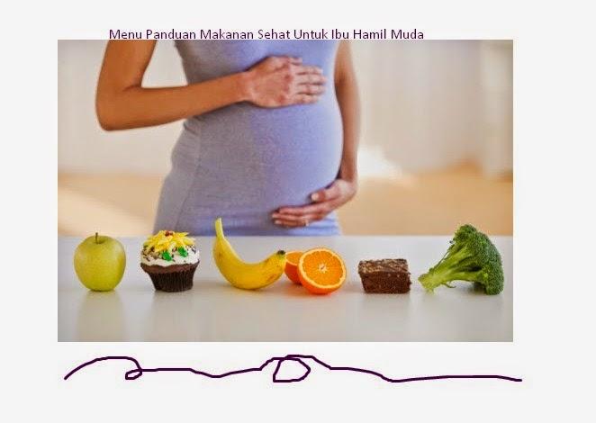 Menu Panduan Makanan Sehat Untuk Ibu Hamil Muda