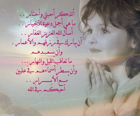 زهرة الياسمين صور