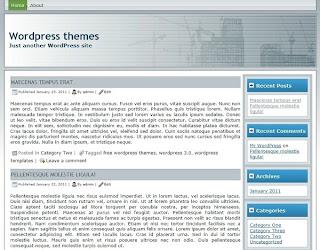 free seo wordpress theme