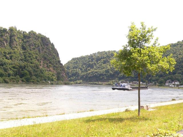 Loreley Rhein Camping Campingtrip mit Hund Urlaub Sommer Entschleunigung VW Caddy
