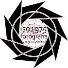 iso1975 Fotografia | Gonçalo T. Almeida