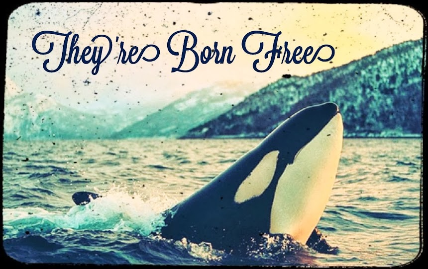 They're Born Free