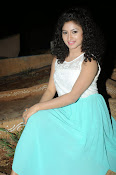 Vishnu Priya at Pyarme Padipoyane audio launch-thumbnail-8